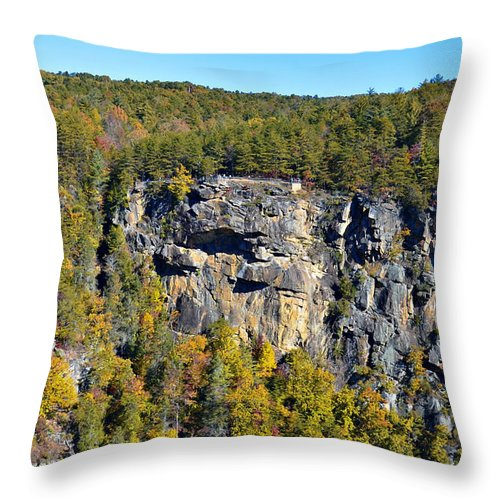Rock Throw Pillow featuring the photograph View From Above by Susan Leggett