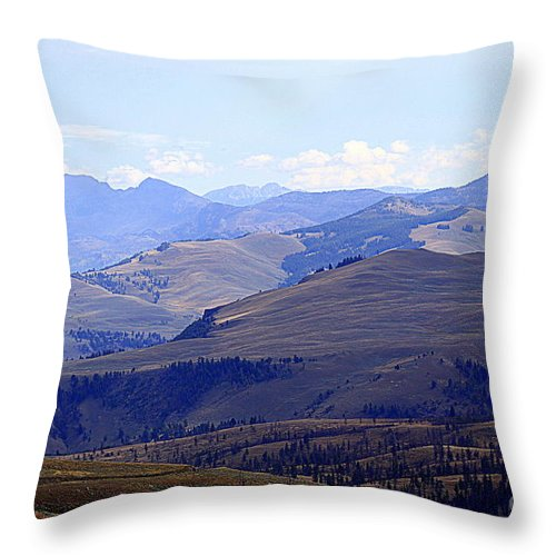 Absaroka Throw Pillow featuring the photograph View Of Absaroka Mountains From Mount Washburn In Yellowstone National Park by Catherine Sherman