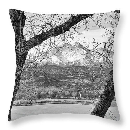 Longs Peak Throw Pillow featuring the photograph View Through The Trees To Longs Peak Bw by James BO Insogna