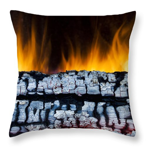 Ash Throw Pillow featuring the photograph Views From The Fireplace by Marc Garrido