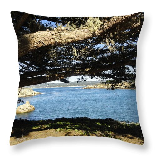 Point Lobos Throw Pillow featuring the photograph Vignette by Shannon Grissom