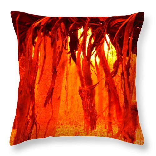 Vine Fringe Throw Pillow featuring the photograph Vine Fringe by Paddy Shaffer