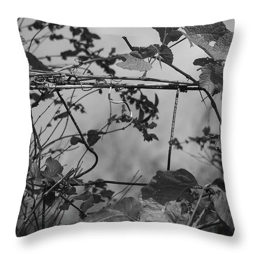 Vine Throw Pillow featuring the photograph Vine On Fence by Stephanie Hanson