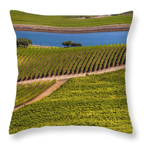 Napa Valley California Wineries Winery Grapevine Grapevines Row Rows Landscape Landscapes Plant Plants Vineyard Vineyards Pond Ponds Lake Lakes Water Throw Pillow featuring the photograph Vineyard On A Lake by Bob Phillips