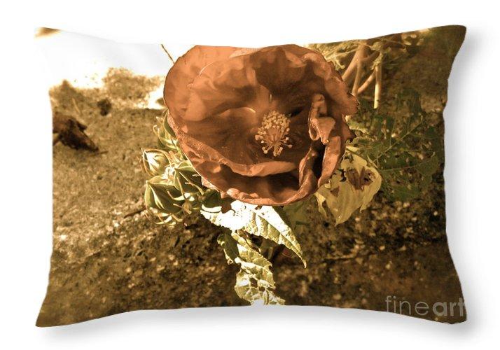 Sepia Throw Pillow featuring the photograph Vintage Memories by Maritza Melendez