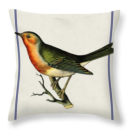Antique Vintage Traditional Bird Birds Realistic Formal Animal Wild Throw Pillow featuring the painting Vintage Robin Vertical by Elaine Plesser