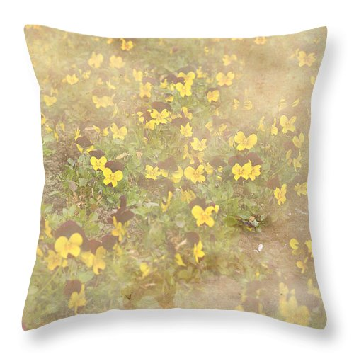Beige Throw Pillow featuring the photograph Viola Field by Pati Photography