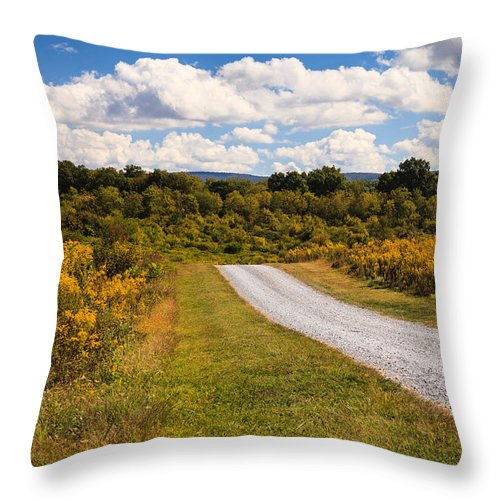 Dirt Road Throw Pillow featuring the photograph Yesterday - Virginia Country Road by Carol VanDyke