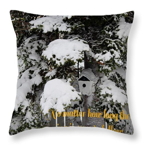 Waiting For Spring Throw Pillow featuring the photograph Waiting For Spring by Barbara Griffin