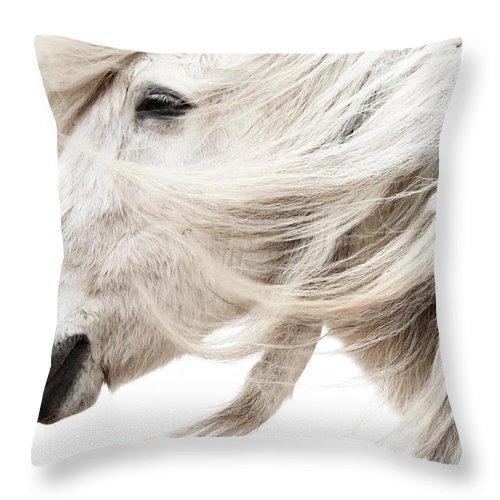 Wind Throw Pillow featuring the photograph Waiting For Spring by Gigja Einarsdottir