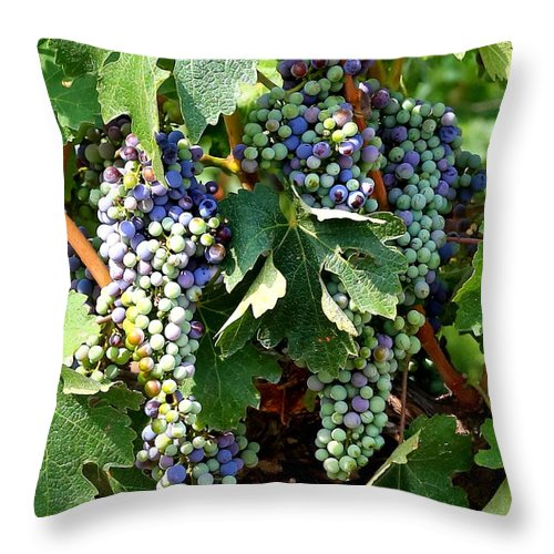 Food And Beverage Throw Pillow featuring the photograph Waiting For Wine by Carol Groenen