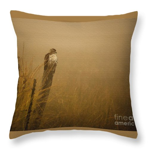 Nature Throw Pillow featuring the photograph Waiting by Steven Reed