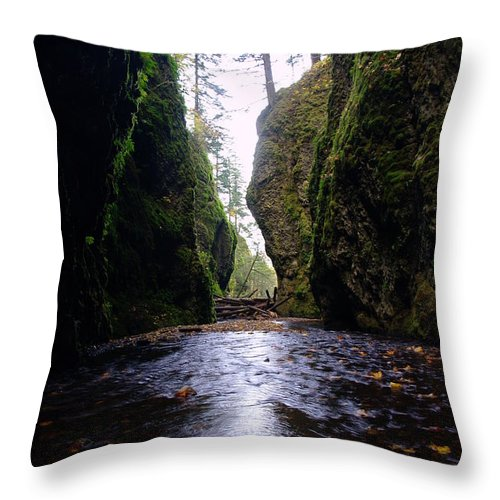 Water Throw Pillow featuring the photograph Walking In The Gorge by Jeff Swan