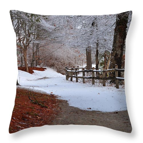 Winter Throw Pillow featuring the photograph Walking Into Winter by Nicole Jeffery