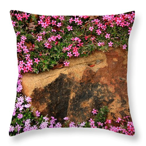 Landscape Throw Pillow featuring the photograph Wallflowers 3 by Gary Emilio Cavalieri