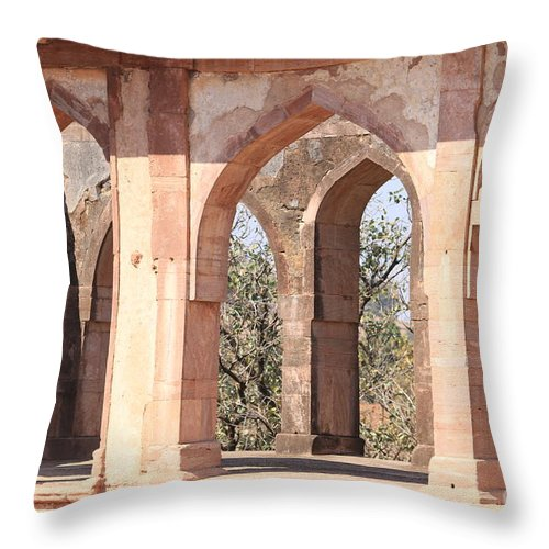 Palace Throw Pillow featuring the photograph Walls And Nature by Four Hands Art