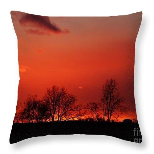 Sunset Prints Throw Pillow featuring the photograph Warm January Sunset by J L Zarek