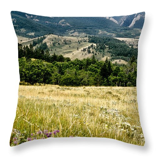 Wilderness Throw Pillow featuring the photograph Washake Wilderness by Kathy McClure