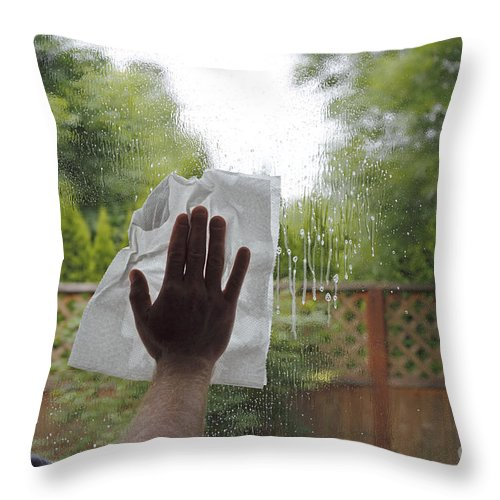 Cleaning Throw Pillow featuring the photograph Washing A Window by Lee Serenethos