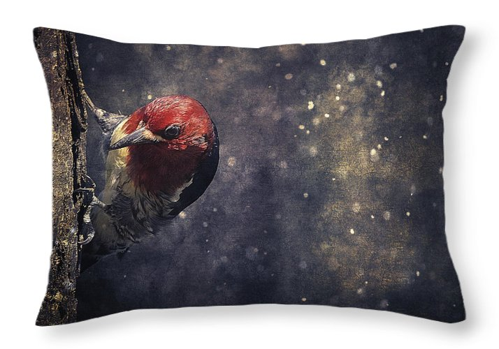 Red-breasted Sapsucker Throw Pillow featuring the photograph Watching Me by Maria Angelica Maira