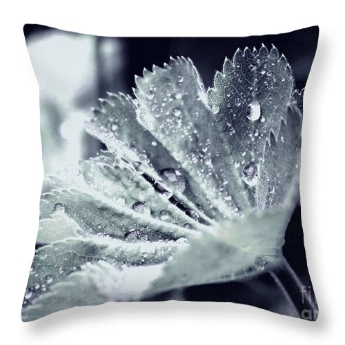 Leaf Throw Pillow featuring the photograph Water Drops by Four Hands Art