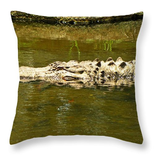 Throw Pillow featuring the photograph Water Gator by MTBobbins Photography