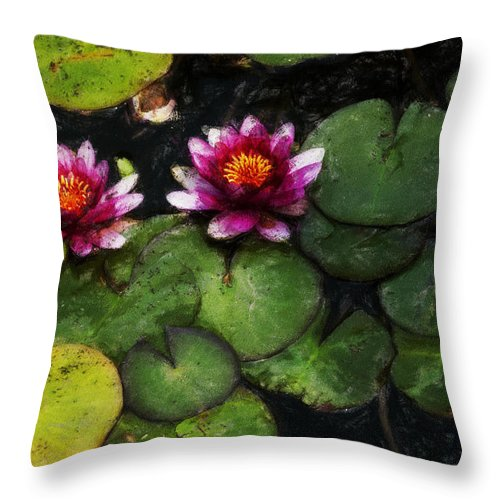 Water Lily Throw Pillow featuring the photograph Water Lily Acanthius by David Lange