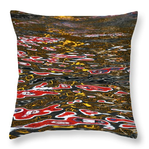 Reflection Throw Pillow featuring the photograph Water Ripple Patterns 1 by James Brunker