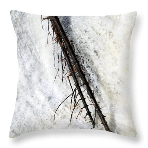 Landscape Throw Pillow featuring the photograph Water Strength by Valentino Visentini
