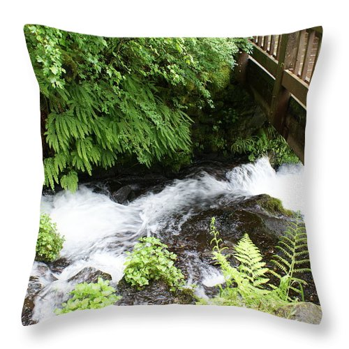 Stream Throw Pillow featuring the photograph Water Under The Bridge I by Jacqueline Russell