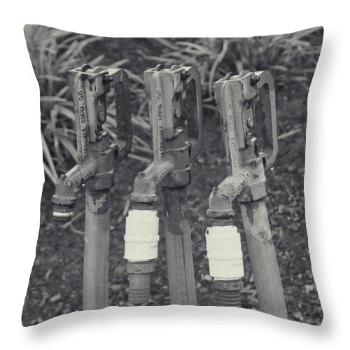 Throw Pillow featuring the photograph Water Water Water by Cathy Anderson