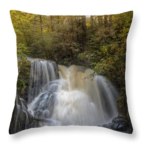 Appalachia Throw Pillow featuring the photograph Waterfall After The Rain by Debra and Dave Vanderlaan
