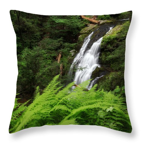 Nonnewaug Falls Throw Pillow featuring the photograph Waterfall Fern Square by Bill Wakeley