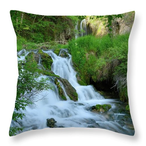 Scenics Throw Pillow featuring the photograph Waterfall In Spearfish Cayon South by Groveb