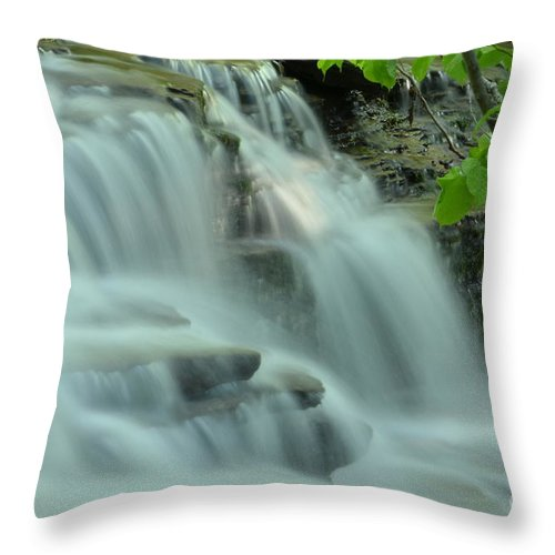 Waterfall Throw Pillow featuring the photograph Waterfall by Todd Schworm