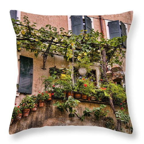 Lake Garda Throw Pillow featuring the photograph Watering Is A Pain by Brenda Kean