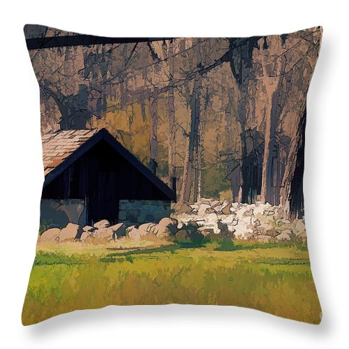 Waterloo Throw Pillow featuring the photograph Waterloo Buildings by Eleanor Abramson