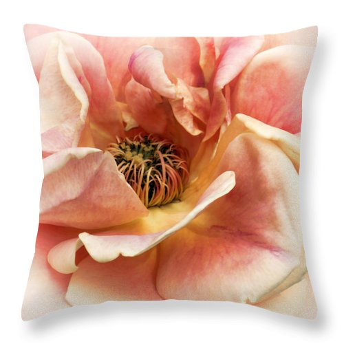 Floral Throw Pillow featuring the photograph Watermelon Margarita by Darlene Kwiatkowski