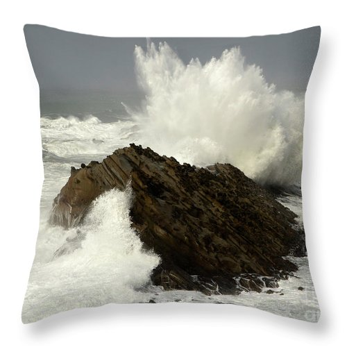 Oregon Throw Pillow featuring the photograph Wave At Shore Acres by Bob Christopher