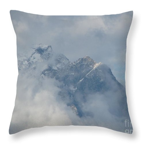 Patzer Throw Pillow featuring the photograph Way Up Here by Greg Patzer