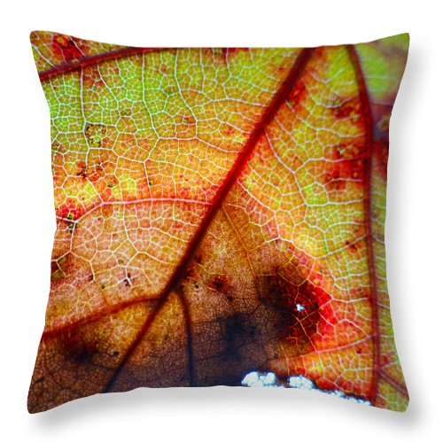 Leaf Throw Pillow featuring the photograph Weathered by Morgan Tyndale