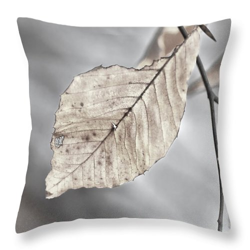 Leaf Throw Pillow featuring the photograph Weathered Remnant Of Summer by Beth Sawickie