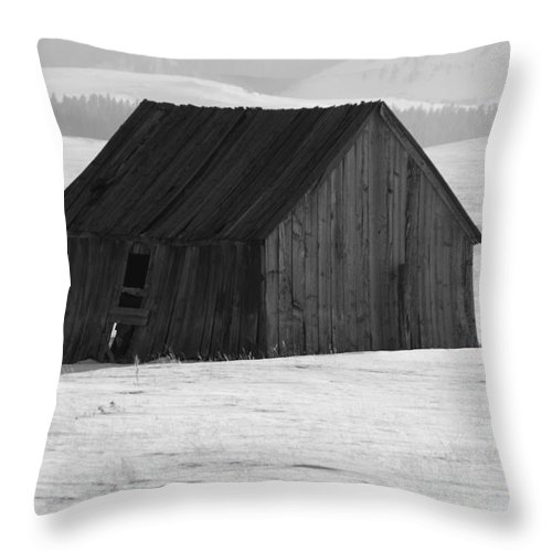 Wyoming Throw Pillow featuring the photograph Weathered Wood by Anthony Wilkening