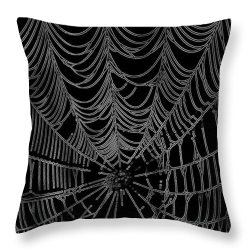 Arachnid Throw Pillow featuring the photograph Web We Weave by Jack R Perry