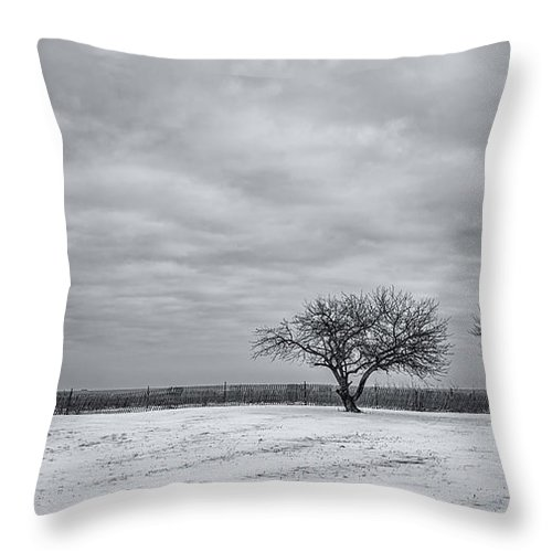 Winter Throw Pillow featuring the photograph Weeping Souls Of Winter Desires by Evelina Kremsdorf