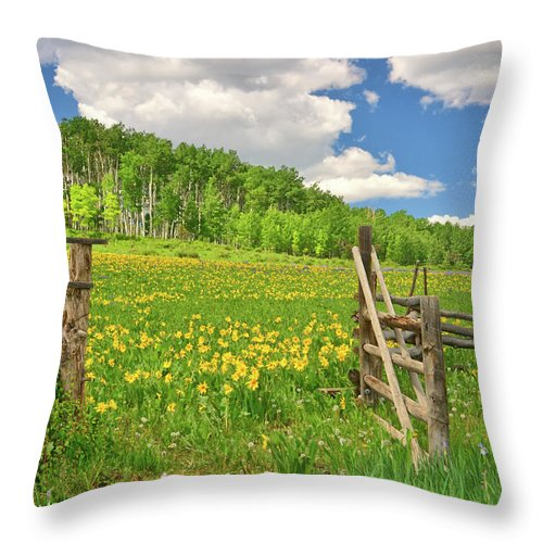 Tranquility Throw Pillow featuring the photograph Welcome To Heaven On Earth by Amy Hudechek