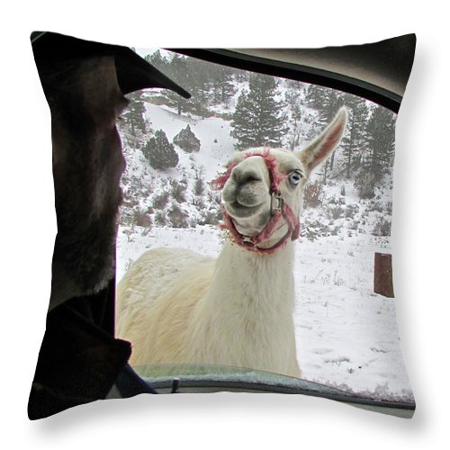Llama Throw Pillow featuring the photograph Welcoming Party by J Crosby