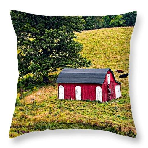 West Virginia Throw Pillow featuring the photograph West Virginia 2 by Steve Harrington