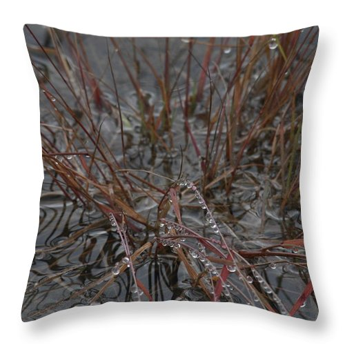 Abstract Throw Pillow featuring the photograph Wet Grasses After A Summer Rain by Ulrich Kunst And Bettina Scheidulin