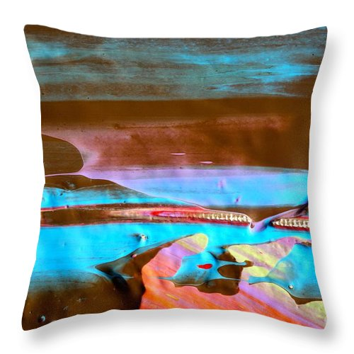 Paint Throw Pillow featuring the photograph Wet Paint 73 by Jacqueline Athmann